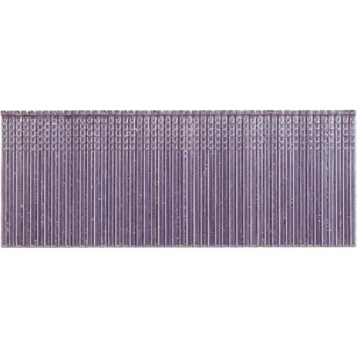 Grip-Rite PrimeGuard Max 16-Gauge 304-Stainless Steel Straight Finish Nail, 2 In. (2500 Ct.)