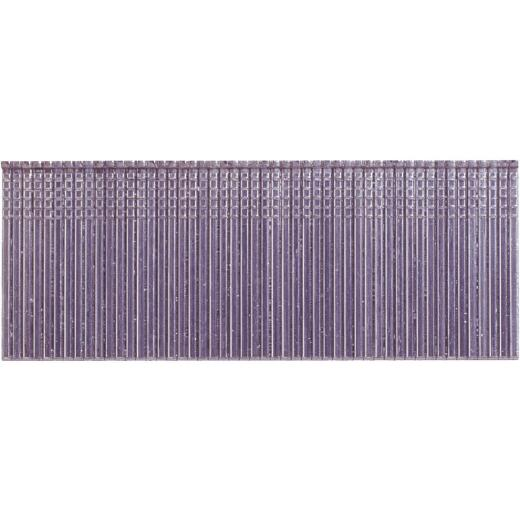 Grip-Rite PrimeGuard Max 16-Gauge 304-Stainless Steel Straight Finish Nail, 2-1/2 In. (2500 Ct.)